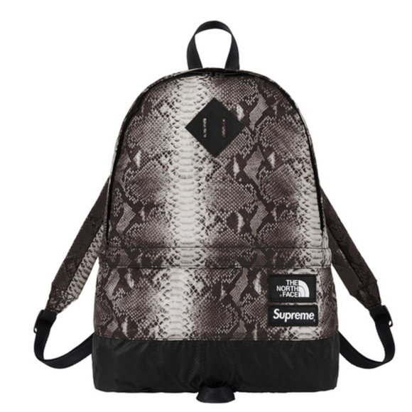 b90196595df6 Supreme The North Face snakeskin Backpack SS18